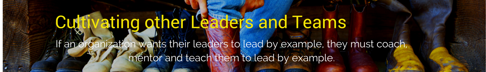 5.Cultivating Leaders - Boots
